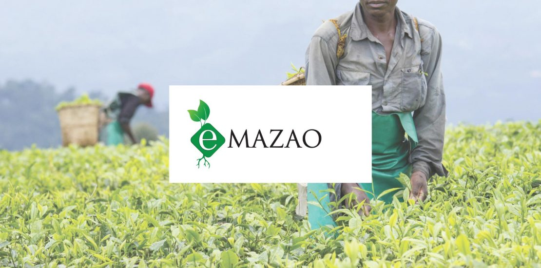 solutions-images-emazao